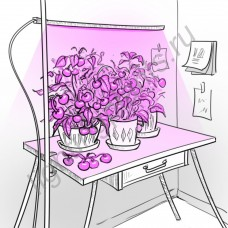 """Светильник для растений с регулировкой высоты и креплением к столу """"Принцепс"""""""